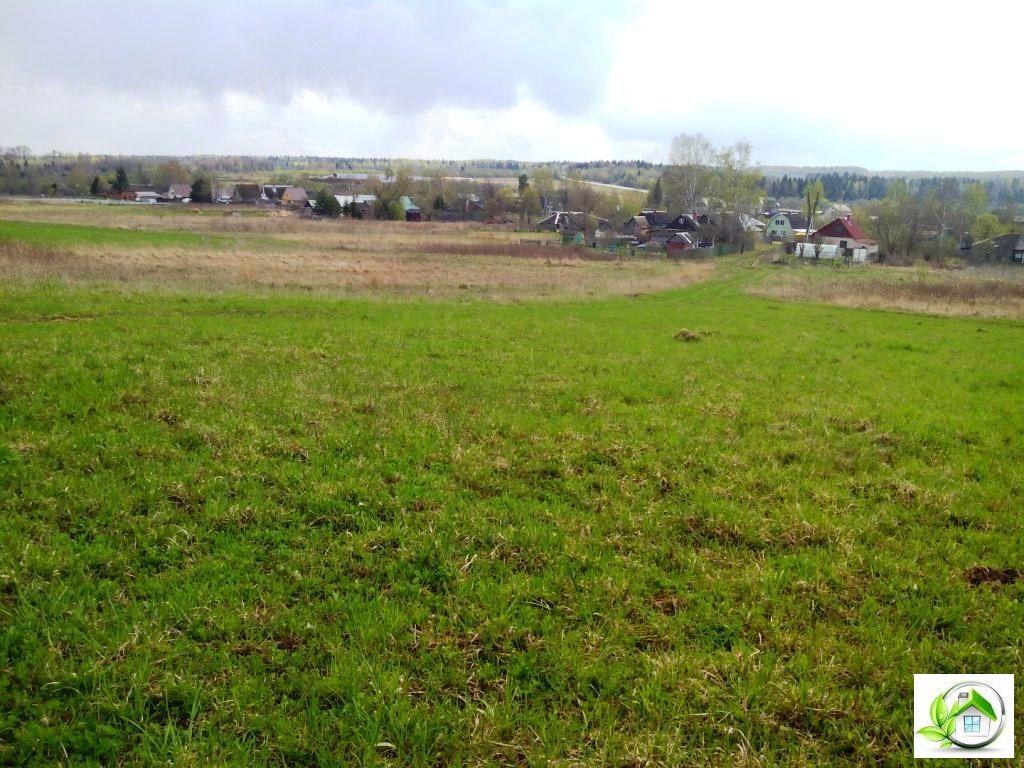 Купить земельный участок 12 соток в середине деревни, в Московской обл - Фото 13