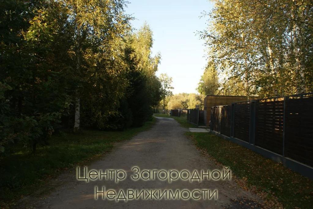 Участок, Киевское ш, Боровское ш, Калужское ш, 22 км от МКАД, . - Фото 18
