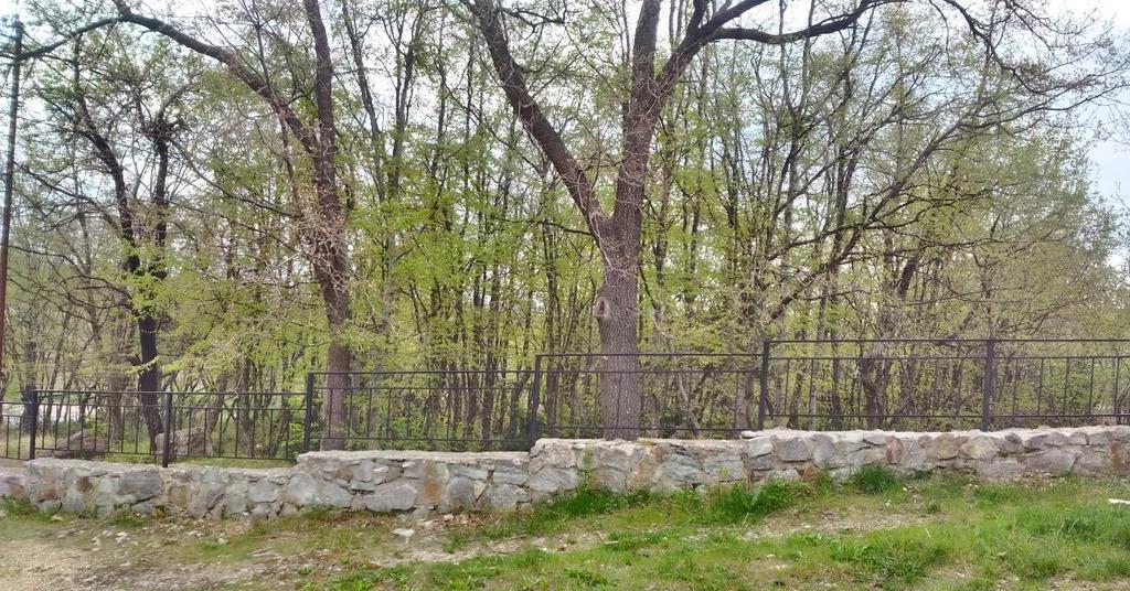 Продается земельный участок Респ Крым, г Ялта, ул Большевистская, д 2 - Фото 8
