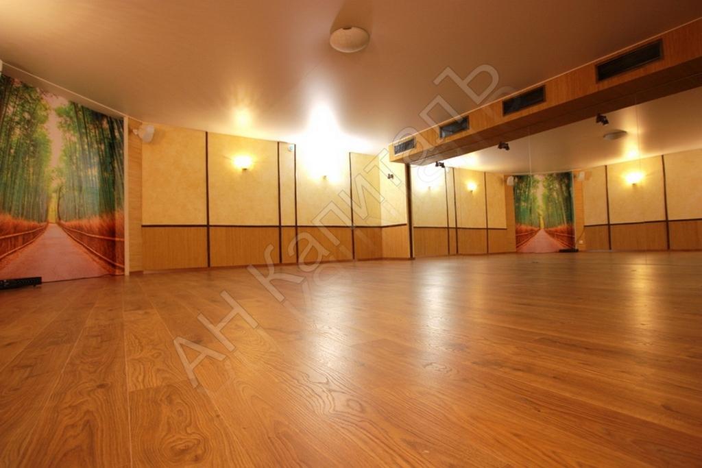 Нежилое помещение 262 кв.м. в г. Москва Столярный пер. дом 2 - Фото 2