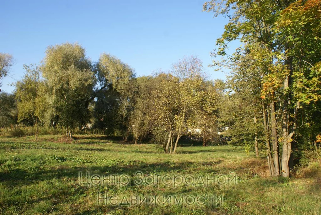 Участок, Киевское ш, Боровское ш, Калужское ш, 22 км от МКАД, . - Фото 9