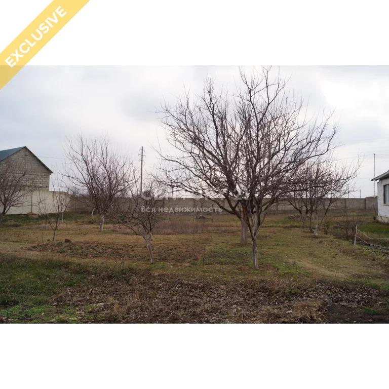 Продажа земельного участок в пгт Тюбе 24 сотки - Фото 7
