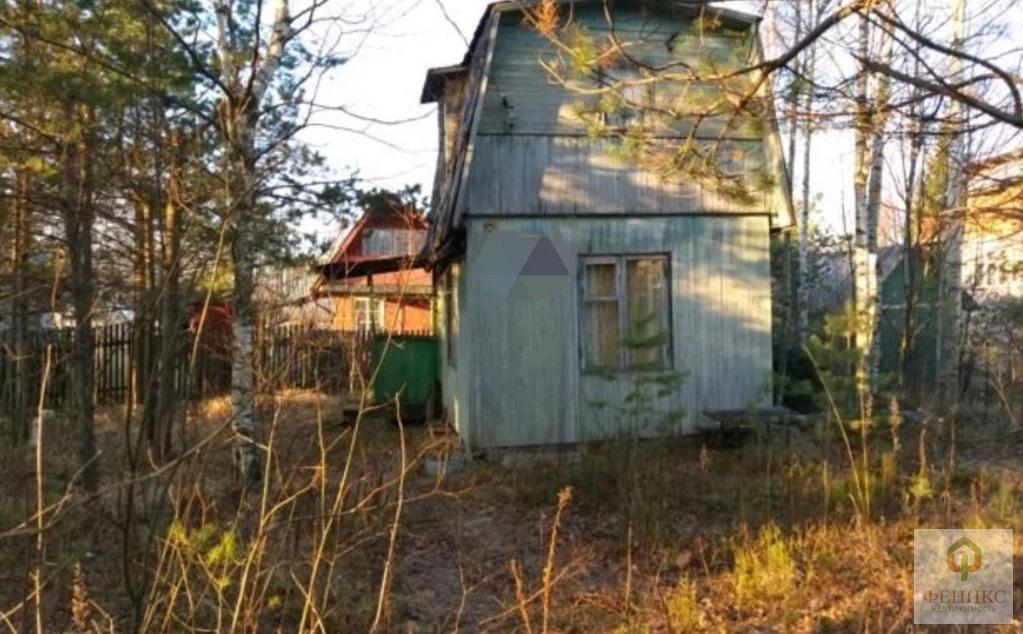 Участок со старым домом. СНТ Заря 4 - Фото 0