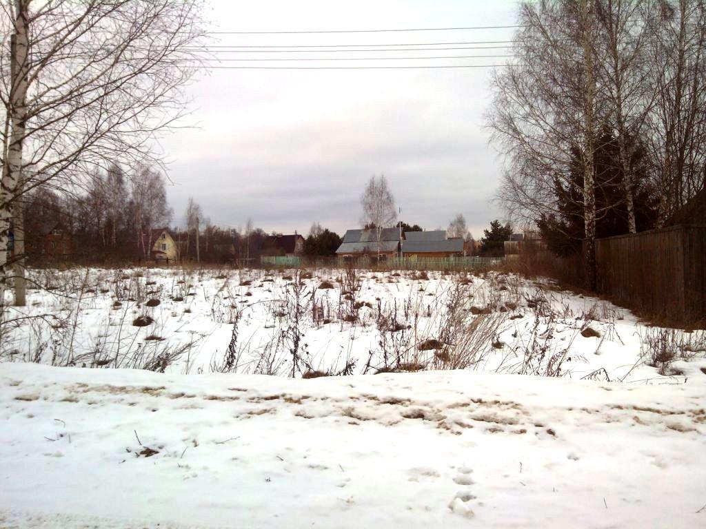 12 соток на берегу озера, МО, Рузский р-н. - Фото 11