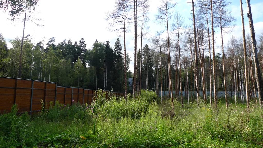 Продажа участка, Каблуково, Щелковский район - Фото 5