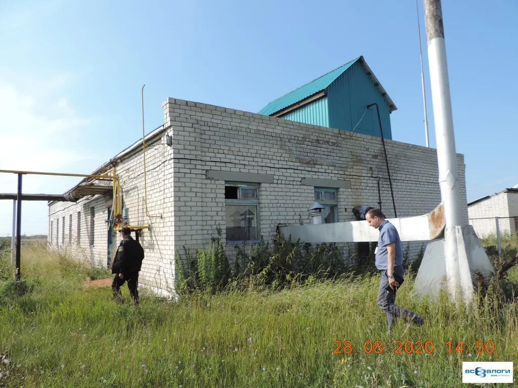 Продажа готового бизнеса, Введенское, Кетовский район - Фото 5