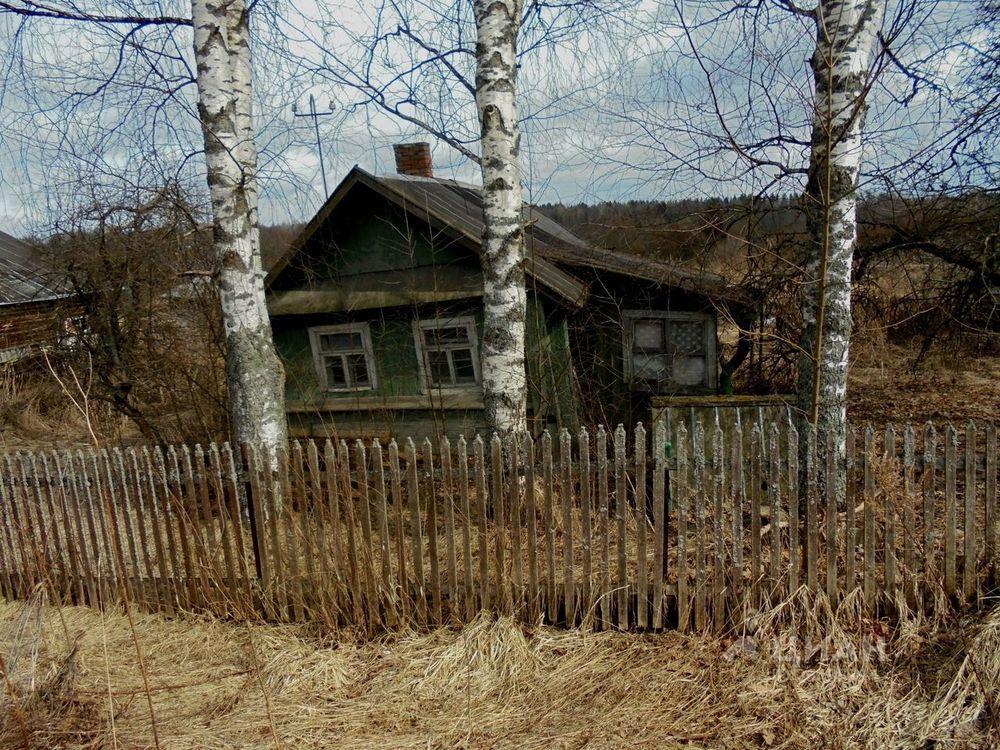 новым деревня витка киришского района фото деревни зимой стоит начать того