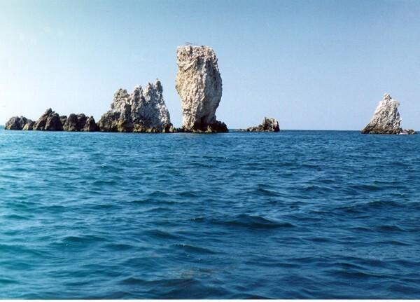 Продам земельный участок 14 сот. у моря в Яковенково - Фото 7