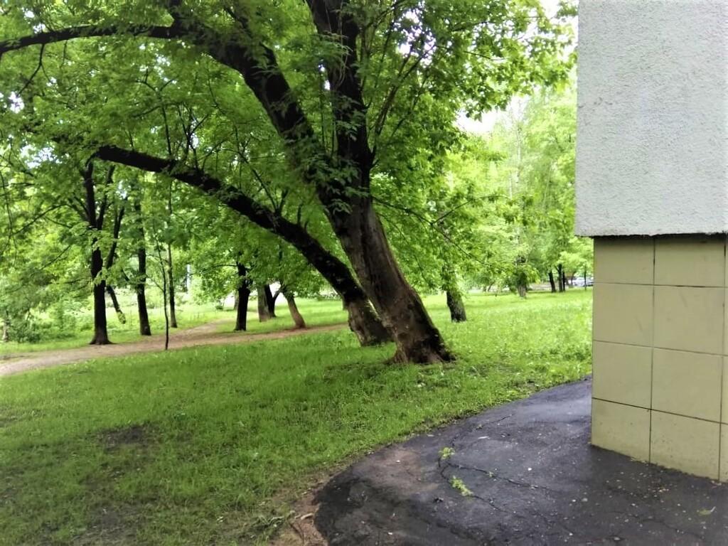 Продаем 3х-комнатную квартиру ул. Шоссейная, д.19к1 - Фото 18