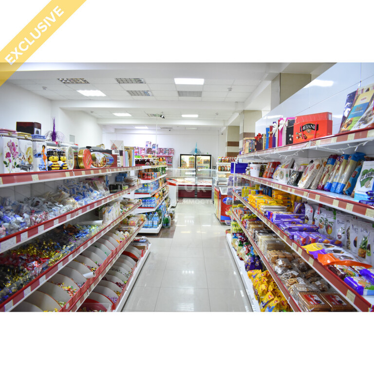 Продажа бизнеса (супермаркет 356 м2 по ул. И. Казака) - Фото 3