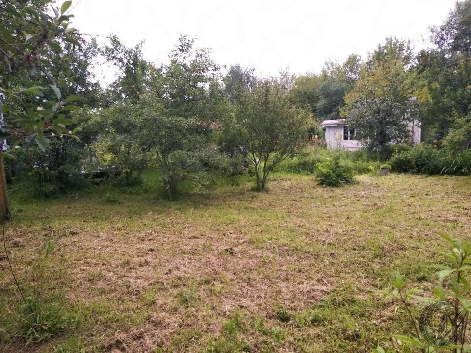 Продается небольшой дом на участке 4 сотки рядом с Глобусом - Фото 5