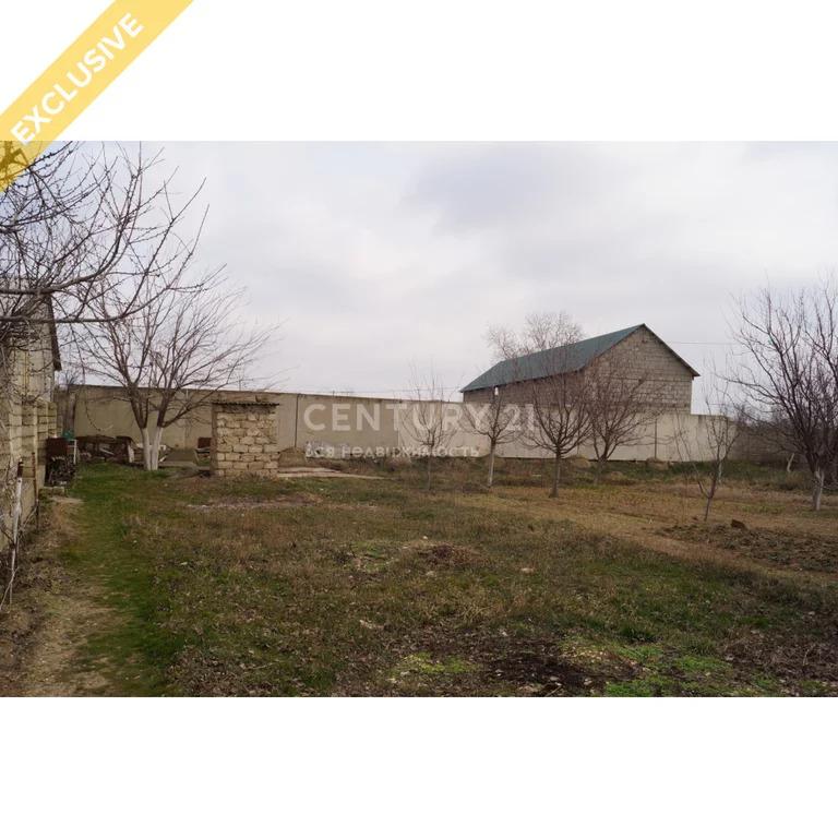 Продажа земельного участок в пгт Тюбе 24 сотки - Фото 6