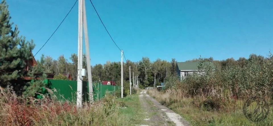 Участок 8 соток для строительства дом в отличном месте, новая Москва - Фото 5