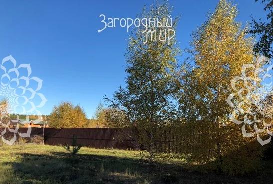 Продам участок, Новорязанское шоссе, 37 км от МКАД - Фото 4