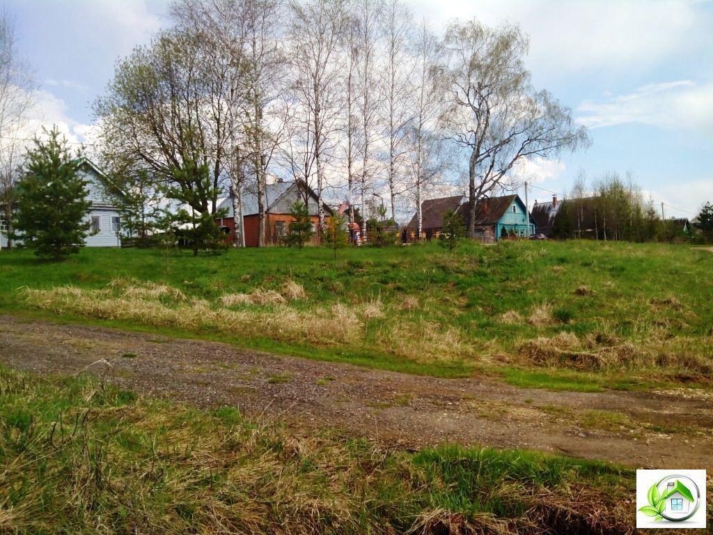 Купить земельный участок 12 соток в середине деревни, в Московской обл - Фото 6
