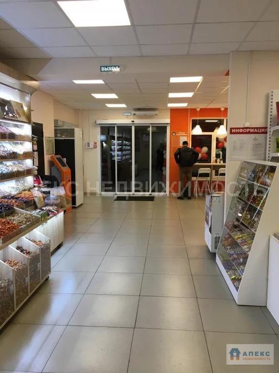 Продажа помещения пл. 526 м2 под магазин, аптеку, пищевое . - Фото 3