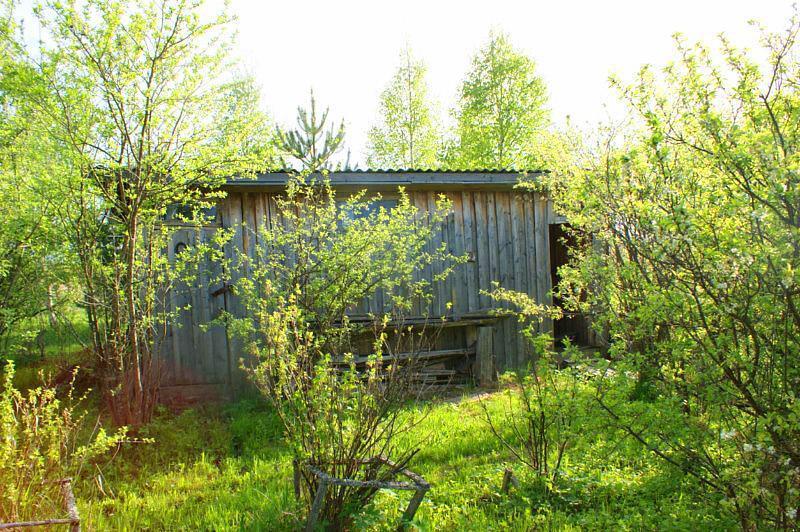 Дом в деревне Гарутино с участком для ПМЖ. Рядом водоем, лес, речка. - Фото 17