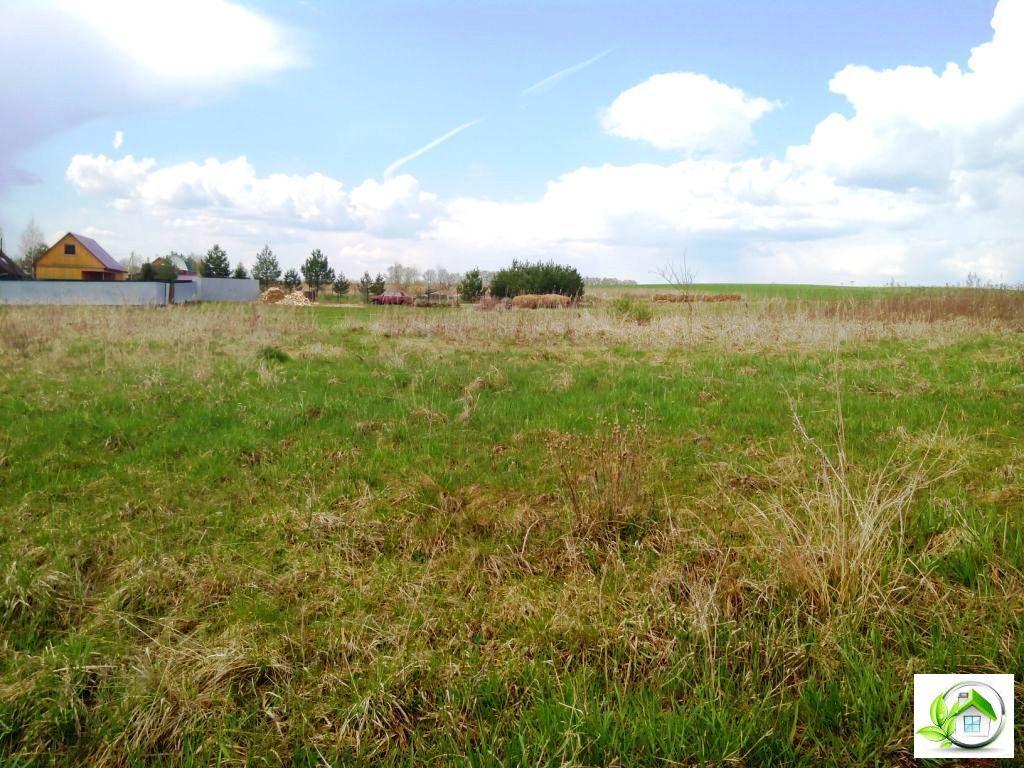 Купить земельный участок 12 соток в середине деревни, в Московской обл - Фото 4