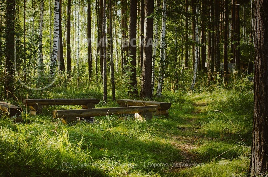 Земельный участок 12 соток к.п. Зуброво Коммуникации все Центральные - Фото 0