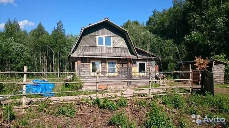 дальнобойщика стихах деревня агашово лодейнопольский район фото глаза, сияют лица