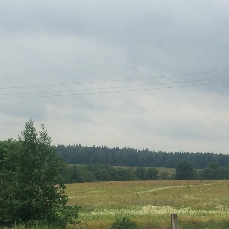 Дом с видом на лес и поле - Фото 4