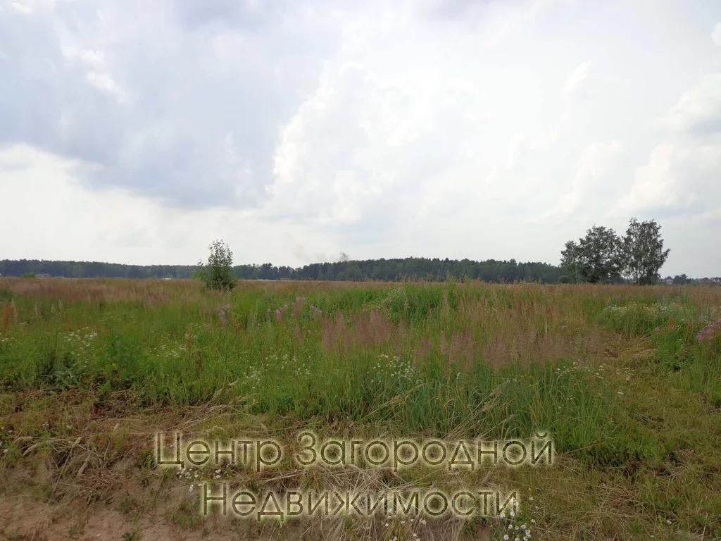 Участок, Симферопольское ш, Варшавское ш, Каширское ш, 62 км от МКАД, . - Фото 11