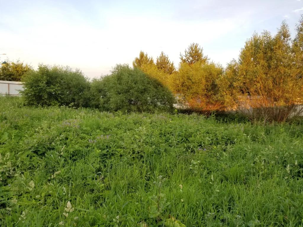 Продажа участка, Никоново, Кленовское с. п, м. Аннино - Фото 8