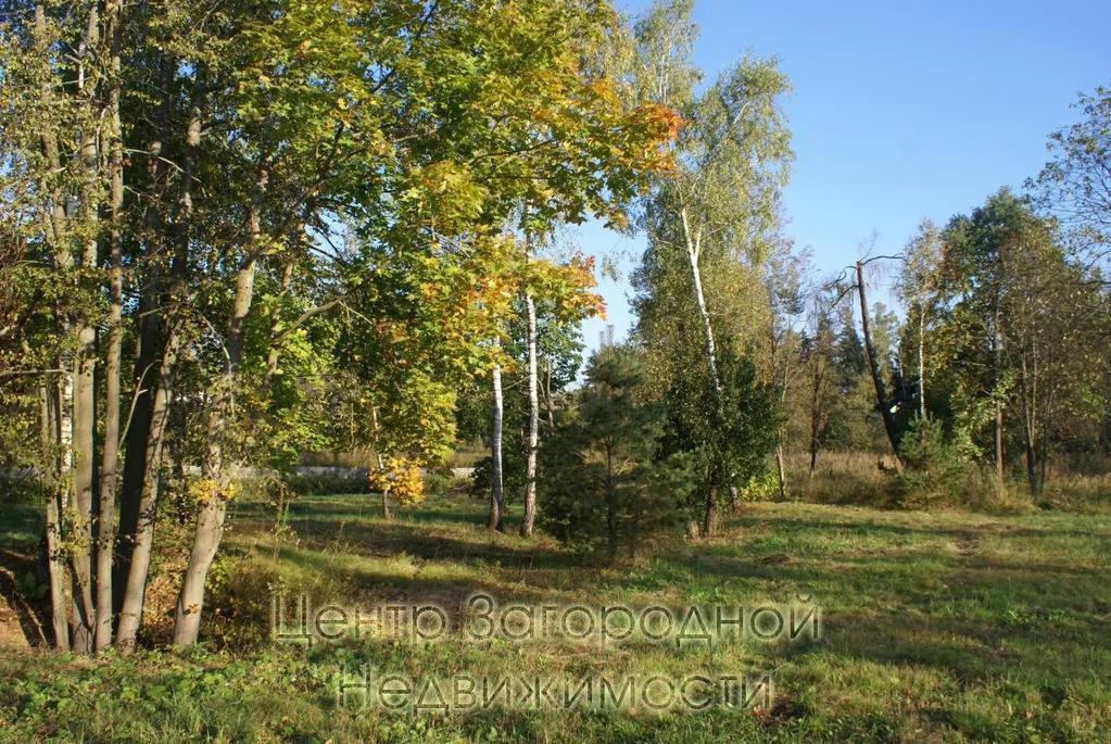 Участок, Киевское ш, Боровское ш, Калужское ш, 22 км от МКАД, . - Фото 10