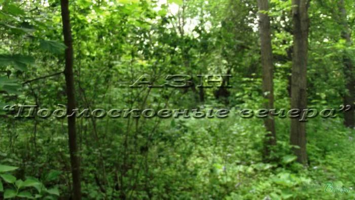 Боровское ш. 5 км от МКАД, район Ново-Переделкино, Участок 28 сот. - Фото 8