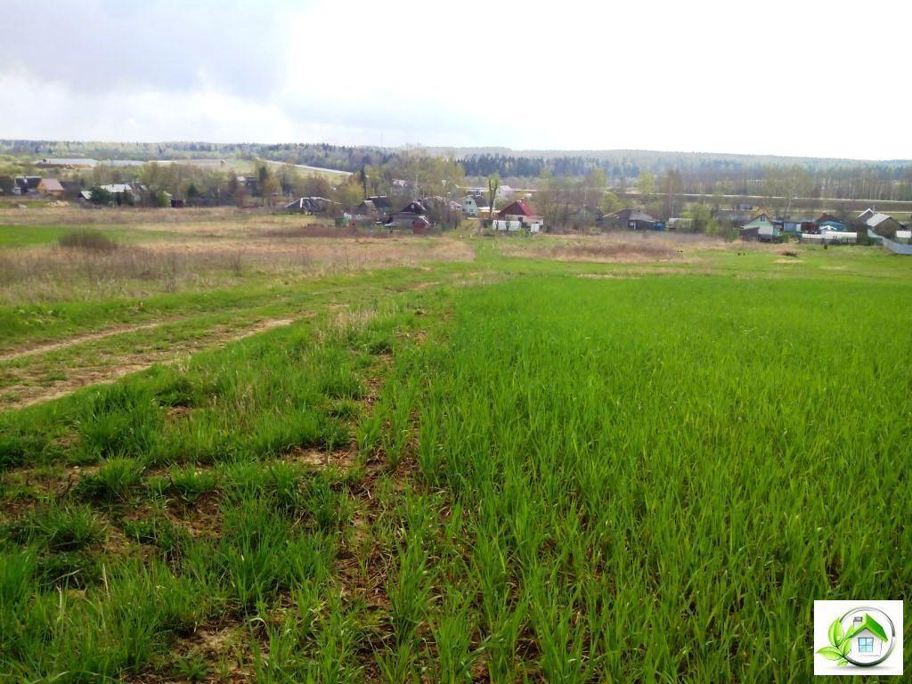 Купить земельный участок 12 соток в середине деревни, в Московской обл - Фото 14