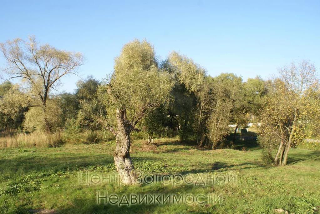 Участок, Киевское ш, Боровское ш, Калужское ш, 22 км от МКАД, . - Фото 11