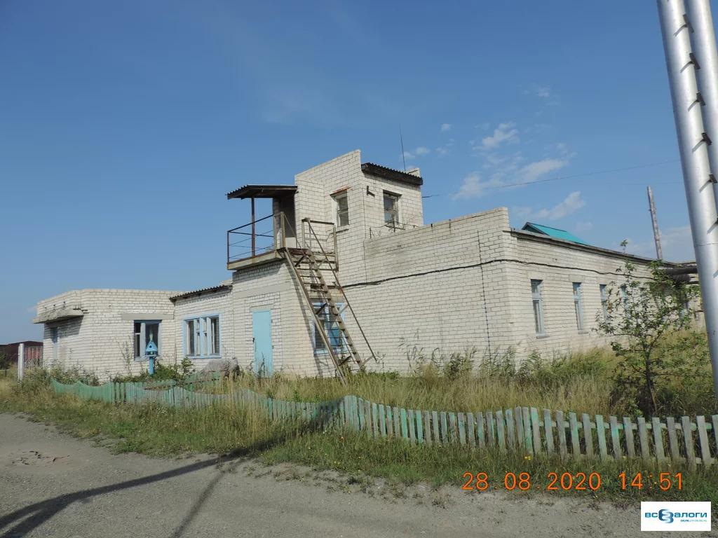 Продажа готового бизнеса, Введенское, Кетовский район - Фото 10