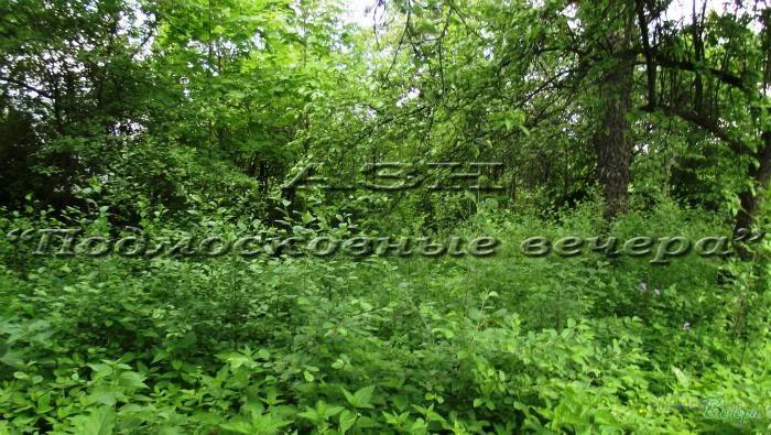 Боровское ш. 5 км от МКАД, район Ново-Переделкино, Участок 28 сот. - Фото 5