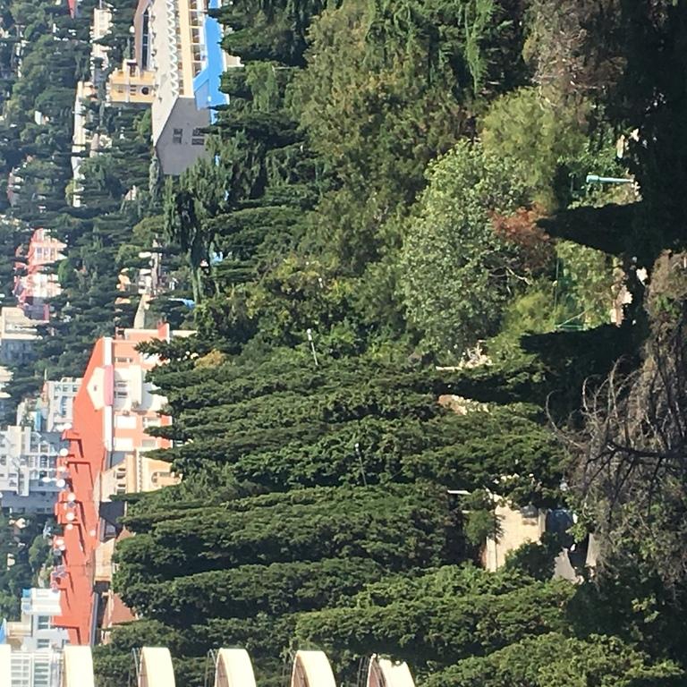 Роскошная квартира в Приморском парке - Фото 34
