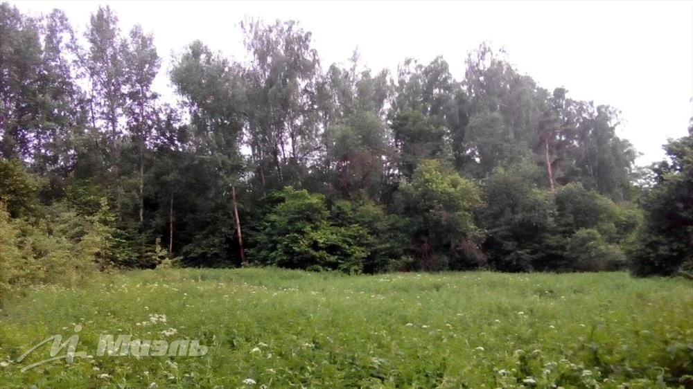 Продажа участка, Расторопово, Воскресенское с. п. - Фото 3