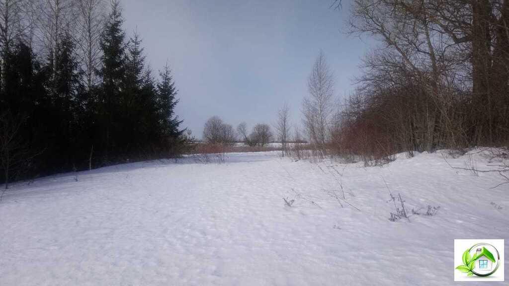 Купить земельный участок 12 соток в середине деревни, в Московской обл - Фото 18