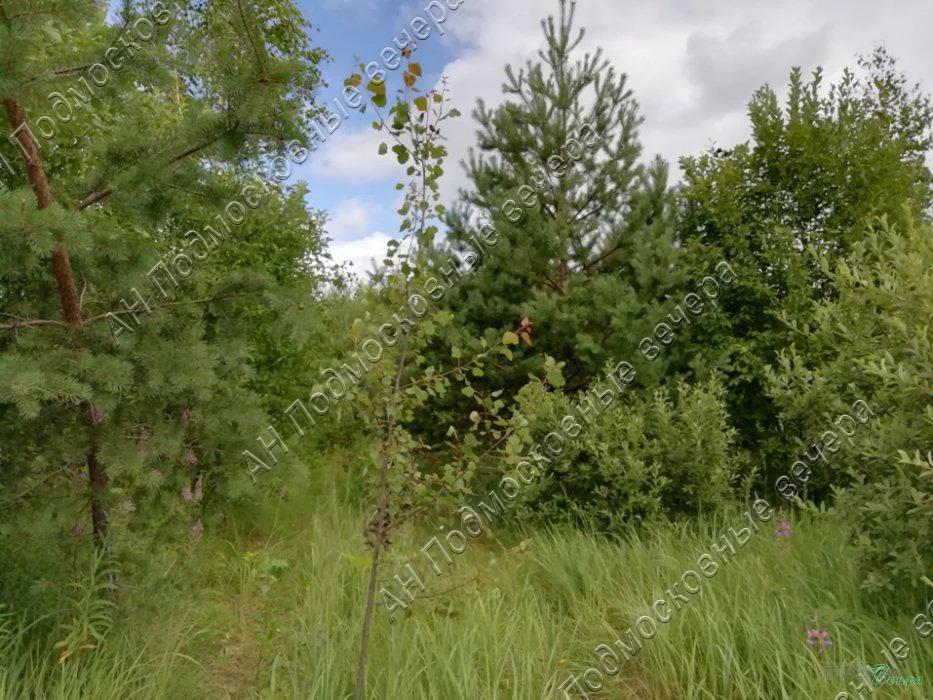 Калужское ш. 30 км от МКАД, Шарапово, Участок 8.27 сот. - Фото 7