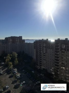 Продажа Квартира Савушкина 140, Купить квартиру в Санкт-Петербурге, ID объекта - 333024561 - Фото 1