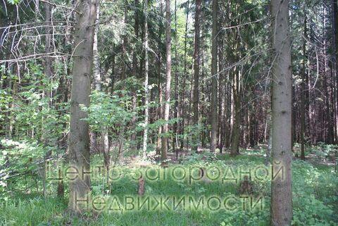 Продается участок. , Милюково д,, Купить земельный участок в Москве, ID объекта - 202322823 - Фото 4