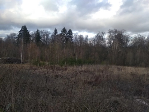 Продажа участка, Молодиково, Рузский район