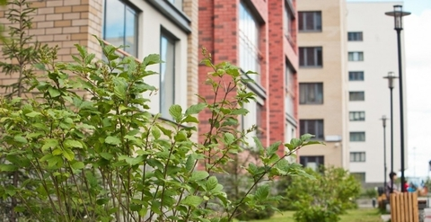 Продам 2-комнатную квартиру в Европейском, Купить квартиру в Тюмени, ID объекта - 317995331 - Фото 1