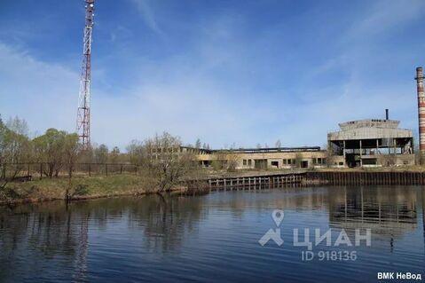 Первое мая тверская область конаковский район фото