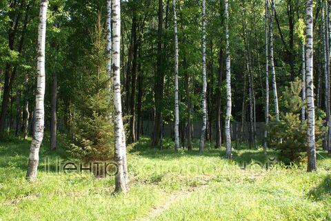 Продается участок. , Милюково д,, Купить земельный участок в Москве, ID объекта - 202322823 - Фото 9