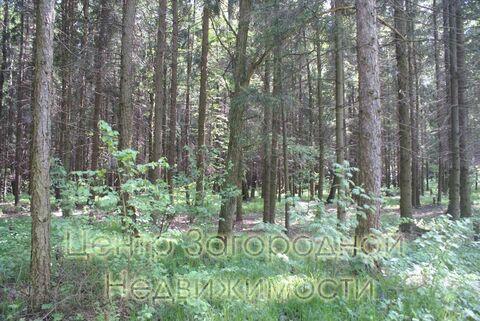 Продается участок. , Милюково д,, Купить земельный участок в Москве, ID объекта - 202322823 - Фото 3