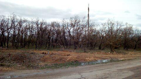 Два смежных участка 15 соток в развивающемся районе, Купить земельный участок в Севастополе, ID объекта - 202465793 - Фото 4