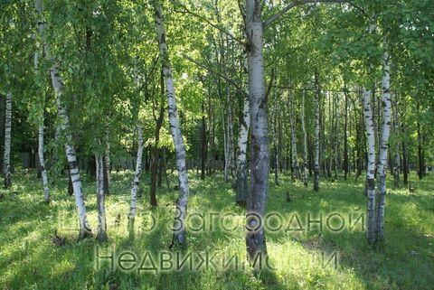 Продается участок. , Милюково д,, Купить земельный участок в Москве, ID объекта - 202322823 - Фото 13