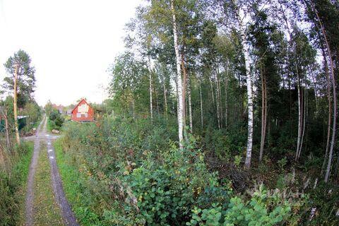 Участок в Ленинградская область, Лужский район, Мшинская садоводческий .