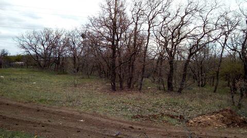 Два смежных участка 15 соток в развивающемся районе, Купить земельный участок в Севастополе, ID объекта - 202465793 - Фото 3