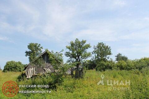 Дом в Новгородская область, Батецкий район, д. Русыня (35.0 м)