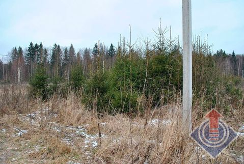 Продажа земельного участка 15 соток в д. Монаково, Купить земельный участок Монаково, Наро-Фоминский район, ID объекта - 201611449 - Фото 1